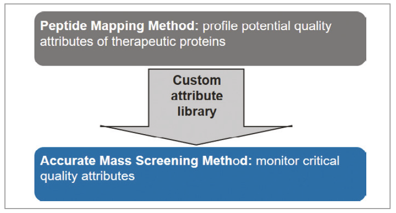 Peptide Mapping Workflow
